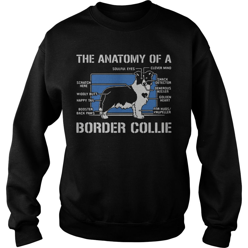 The anatomy of a border collie dog Sweater