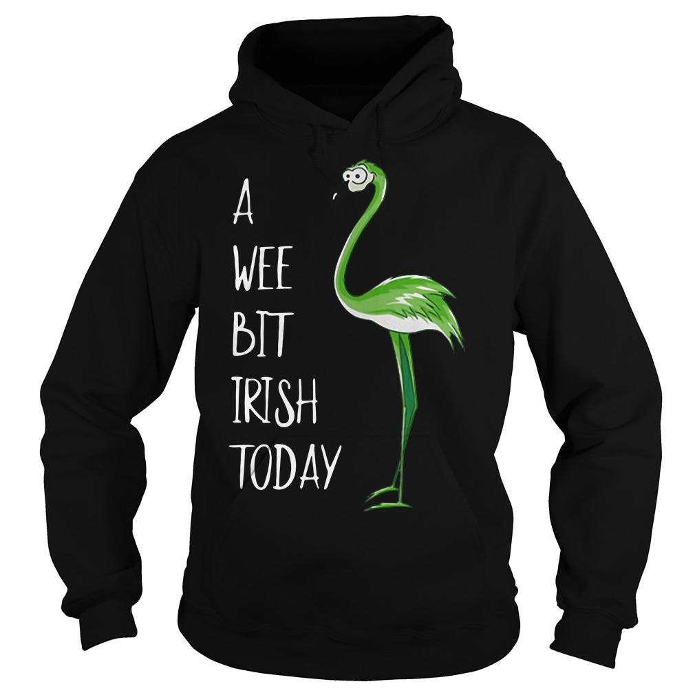 Flamingos a wee bit irish today Hoodie