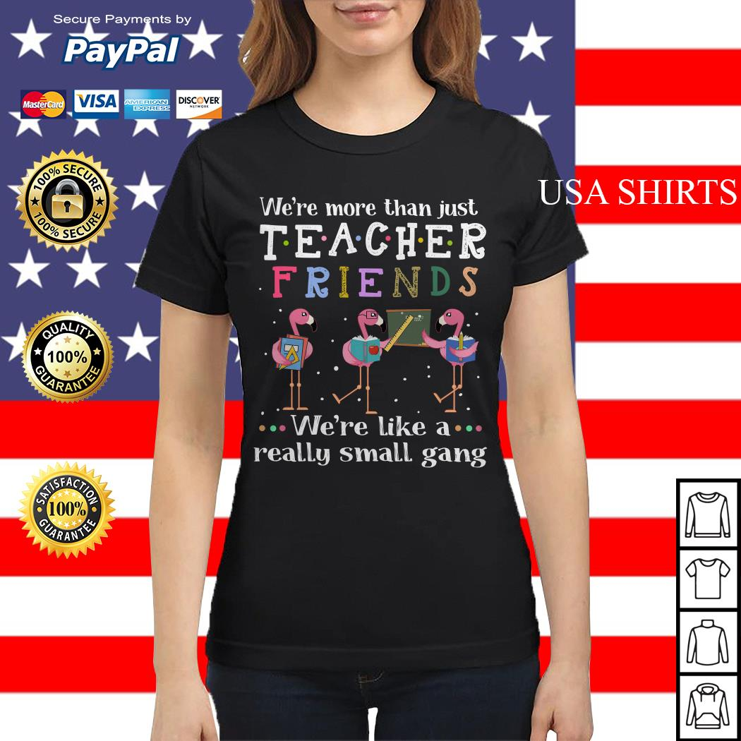 Flamingos we're more than just teacher friends Ladies tee