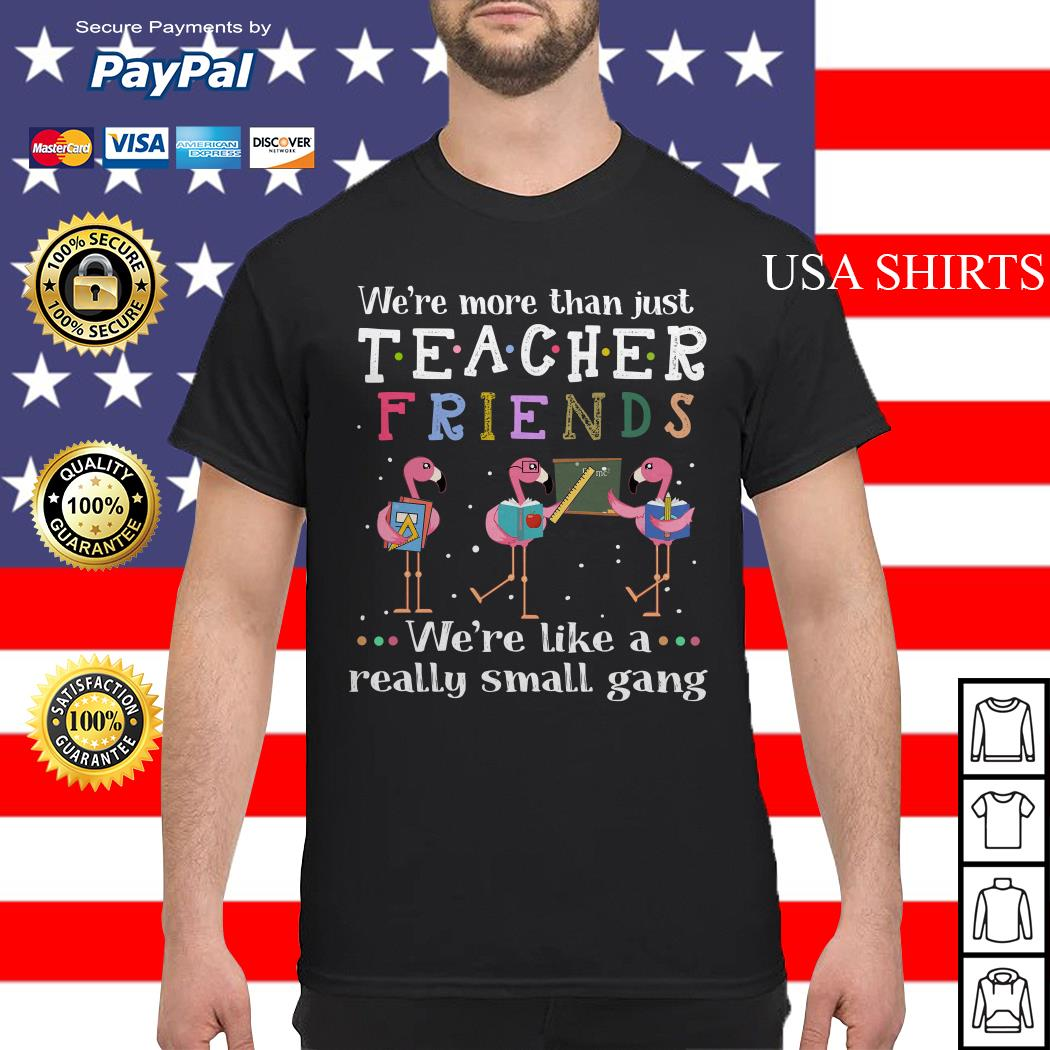 Flamingos we're more than just teacher friends shirt