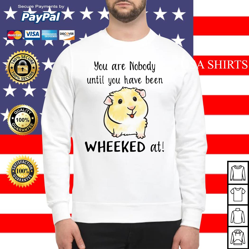Hamster you are nobody until you have been wheeked at Sweater