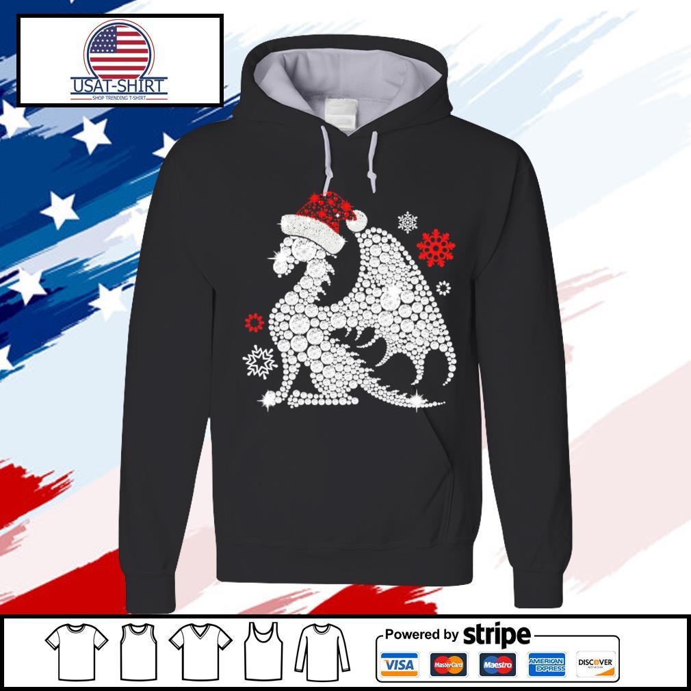 dragon christmas s hoodie