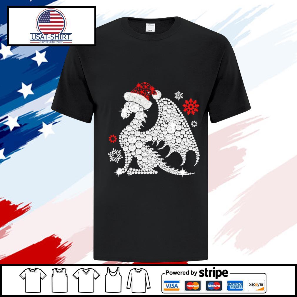 dragon christmas shirt
